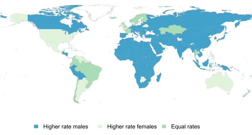 Gender divides in internet usage